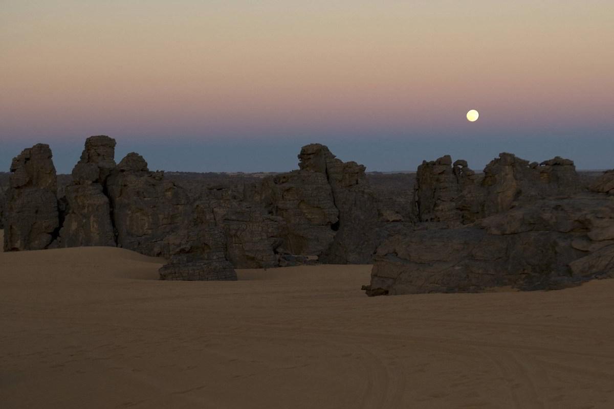 Clanak-Carolija-pustinje (5)