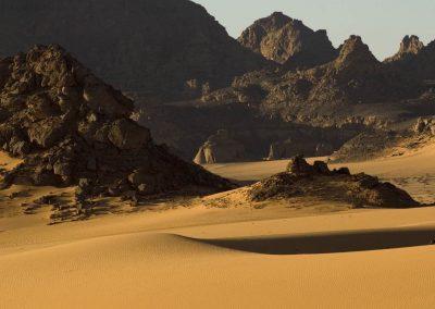 Clanak-Carolija-pustinje (6)