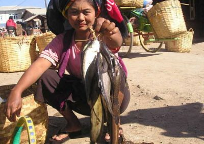 Clanak-Myanmar-Zlatna-zemlja (7)