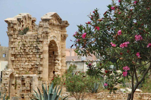 Putovanje-Libanon-Domovina-Fenicana (16)