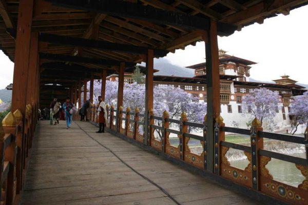 Putovanje-Butan-Posljednja-budisticka-kraljevina (5)