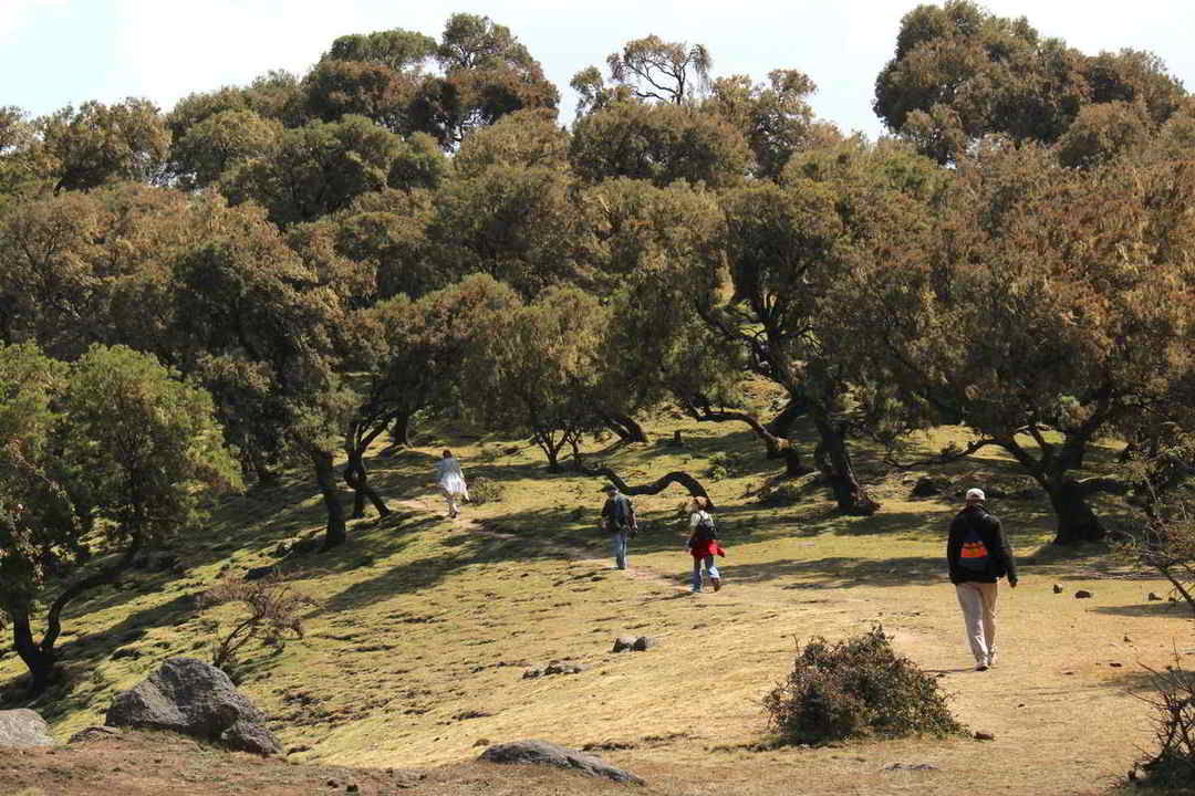 Putovanje-Etiopija-Povijesni-krug-i-plemena-doline-rijeke-Omo (13)