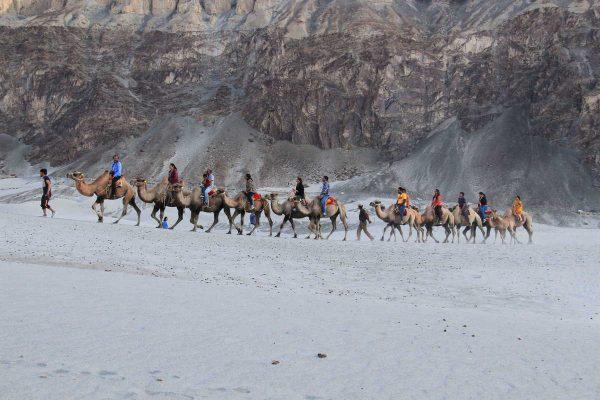 Putovanje-Indija-Himalajom-kroz-Ladak-i-Kasmir (1)