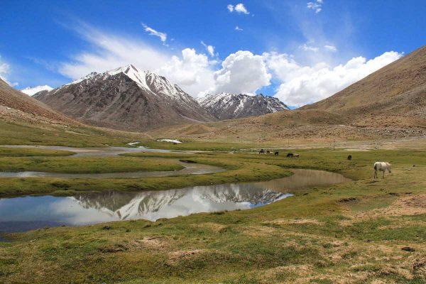 Putovanje-Indija-Himalajom-kroz-Ladak-i-Kasmir (2)
