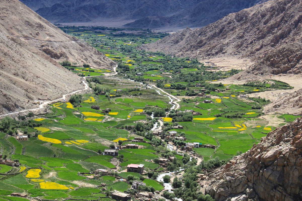 Putovanje-Indija-Himalajom-kroz-Ladak-i-Kasmir (8)