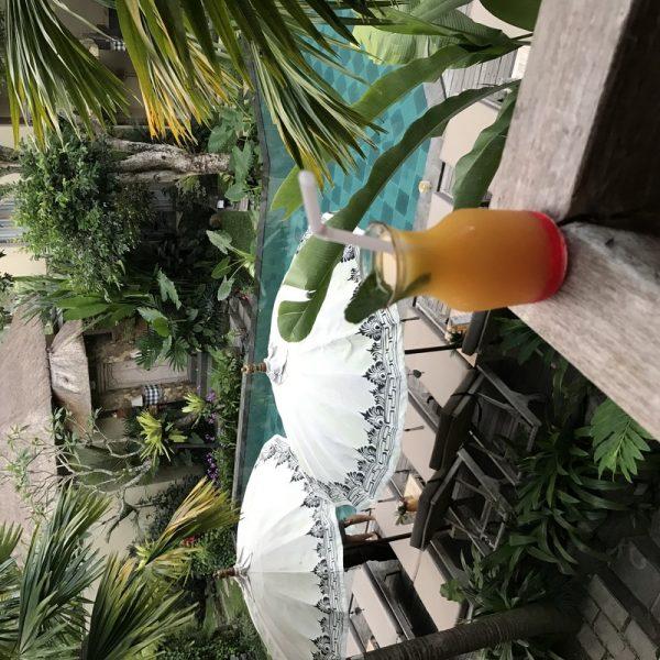 Putovanje-Indonezija-Bali-otok-bogova (5)
