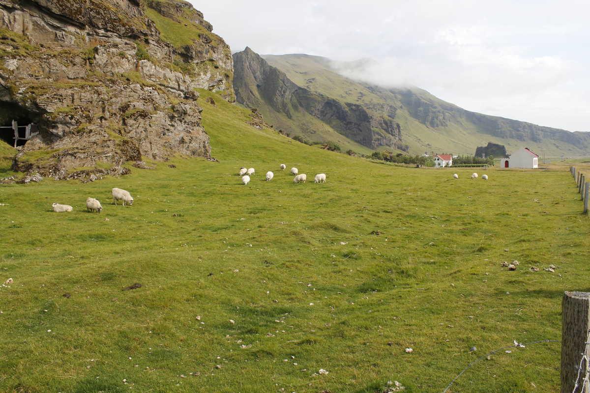 Putovanje-Island-Laugarvegur-treking (7)
