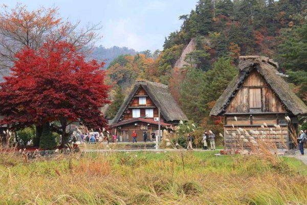 Putovanje-Japan-Jesen-u-Japanu (12)