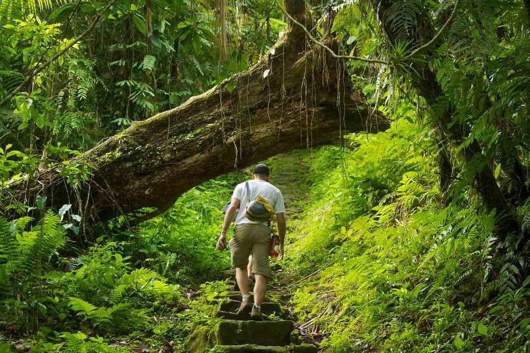 Putovanje-Kolumbija-U-potrazi-za-izgubljenim-gradom (8)