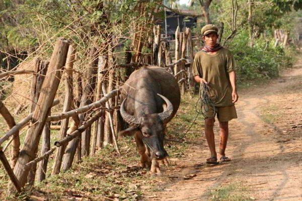 Putovanje-Laos-Sarm-uspavane-ljepotice (15)