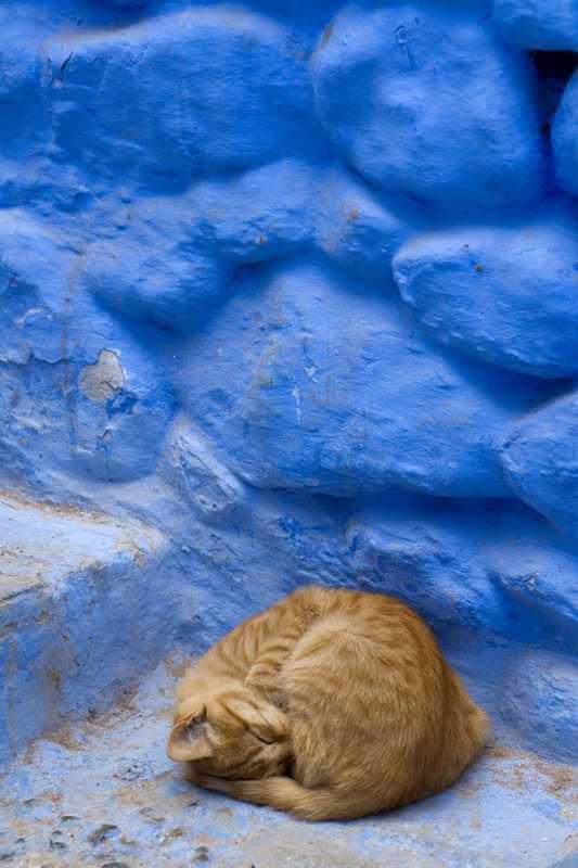 Putovanje-Maroko-Obiteljsko-putovanje (12)