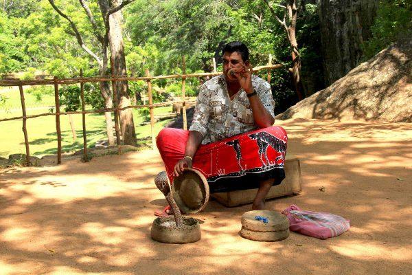 Putovanje-Sri-Lanka-Misticni-krajolici-zelenog-raja (14)