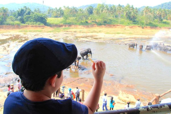Putovanje-Sri-Lanka-Obiteljsko-Putovanje (9)