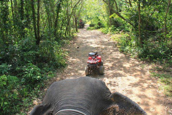 Putovanje-Tajland-Obiteljska-pustolovina (6)