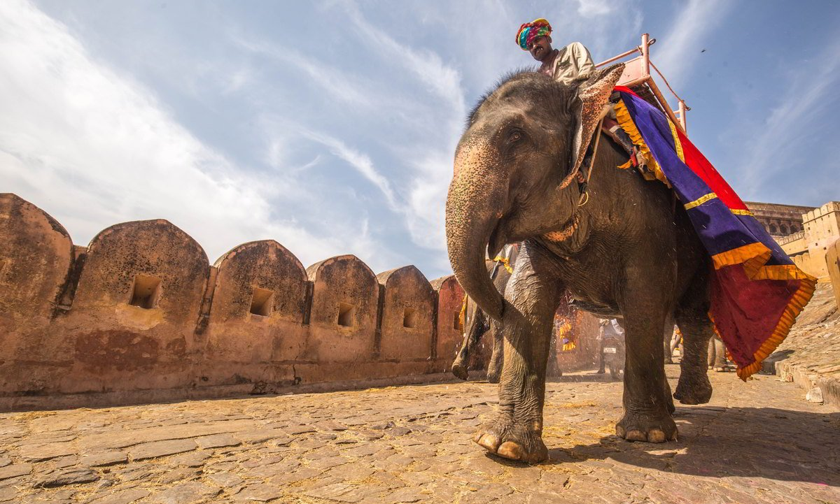 Putovanje-Indija-Holi-festival-boja-u-Indiji (12)