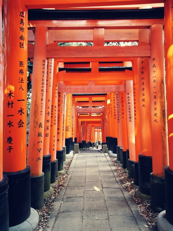 Putovanje-Japan-Uspon-na-Mt-Fuji (1)