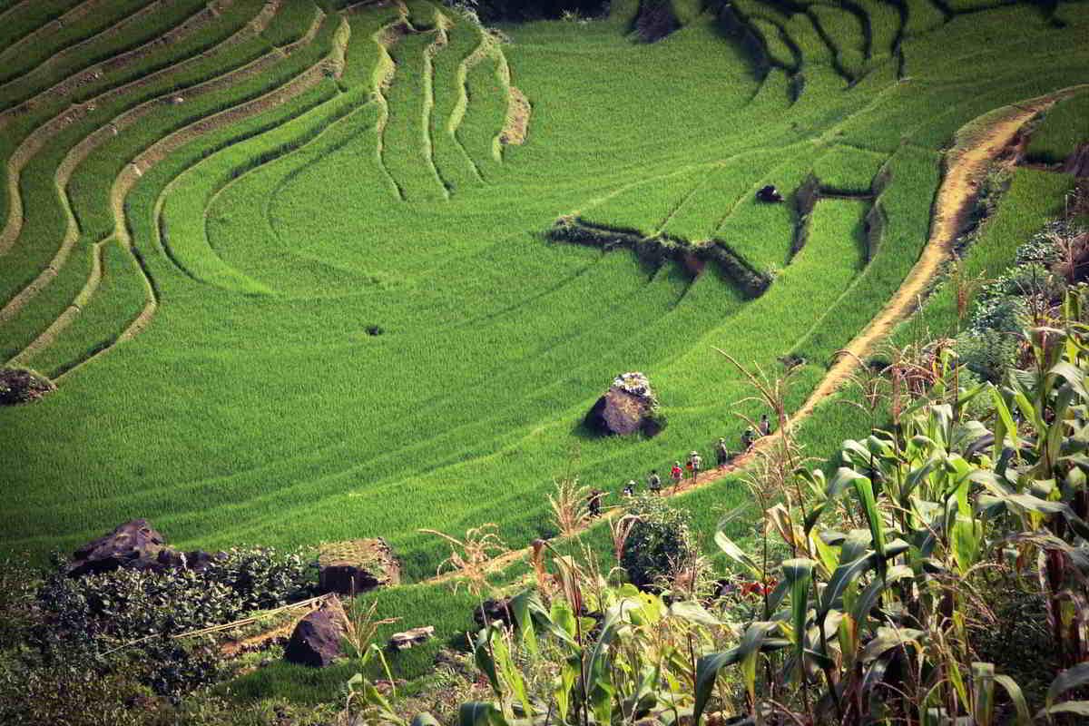 Putovanje-Vijetnam-Otkrij-Vijetnam-od-sjevera-do-juga (10)