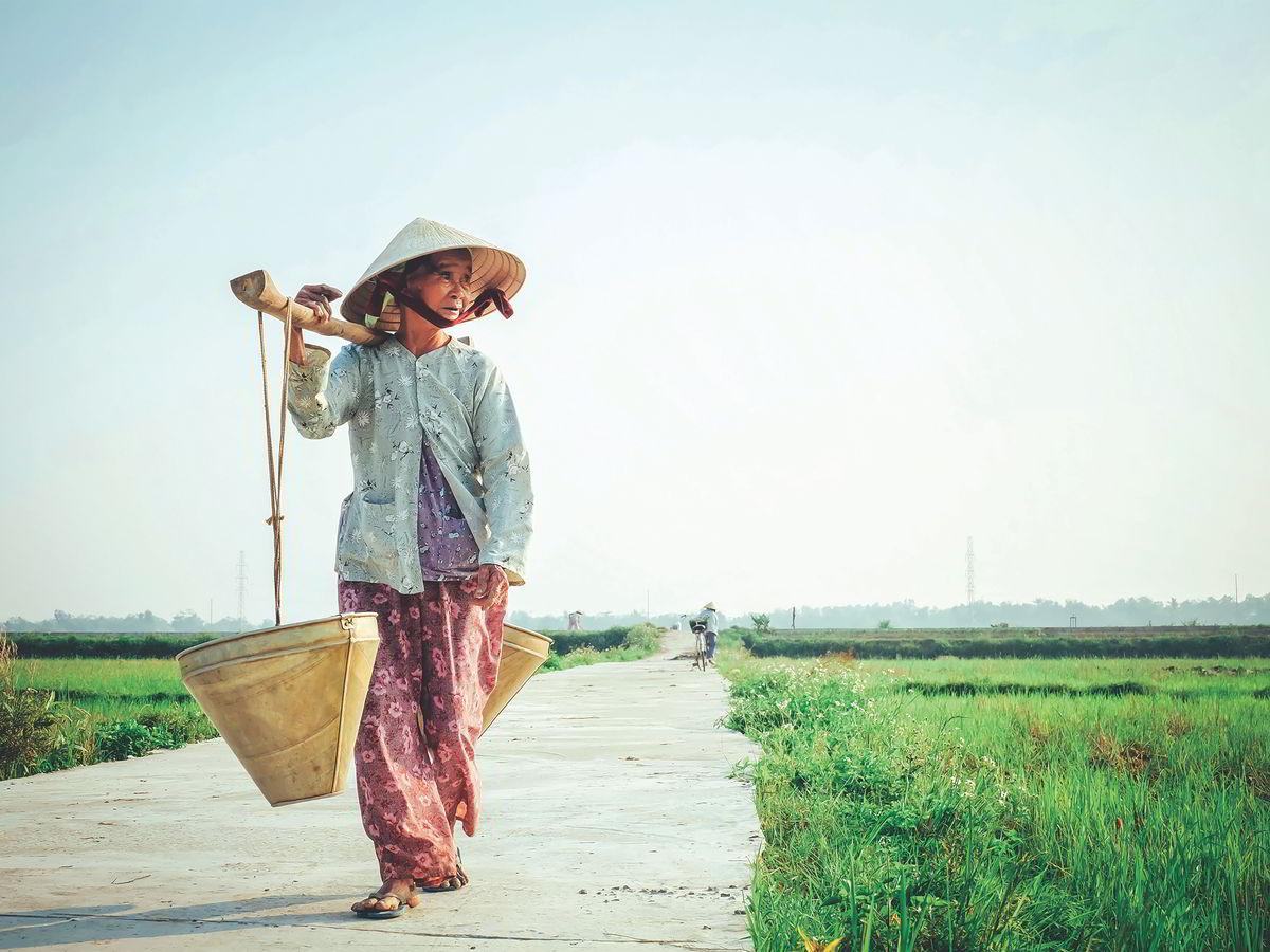 Vijetnam: Otkrij Vijetnam od sjevera do juga (14)