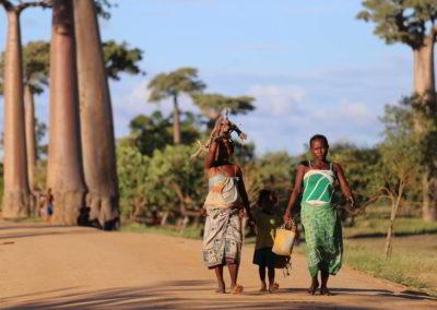 Clanak-Madagaskar-Kontinent-za-sebe (1)