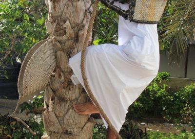 Clanak-Oman (7)