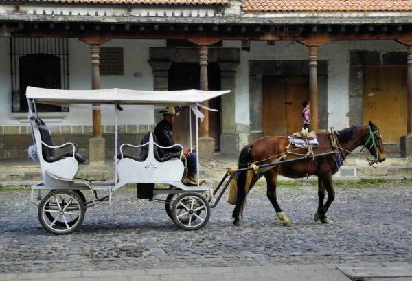 Putovanje-Meksiko-Viva-Mexico (7)