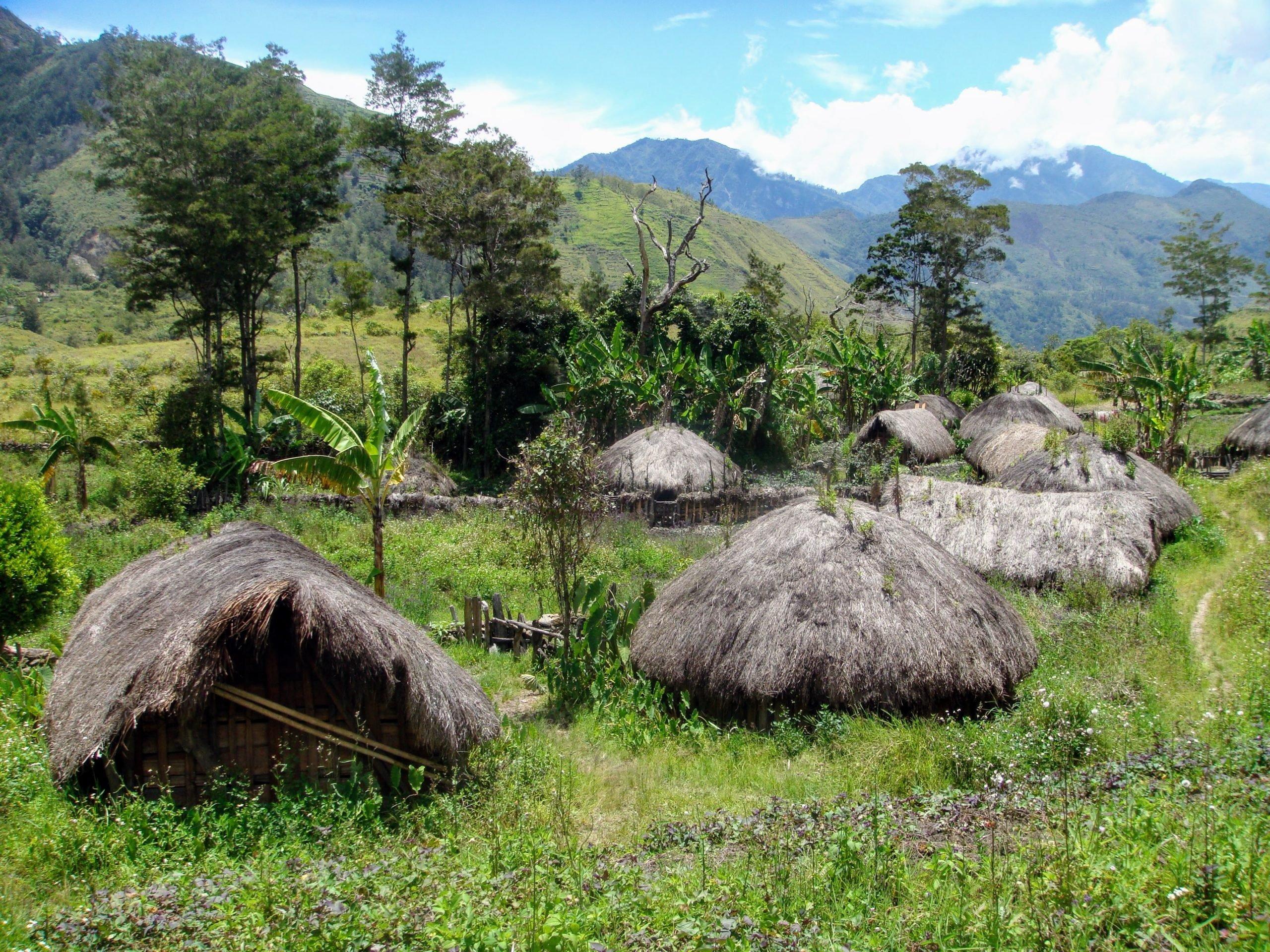Putovanje Indonezija - Papua - Festival i treking u dolini Baliem (15)
