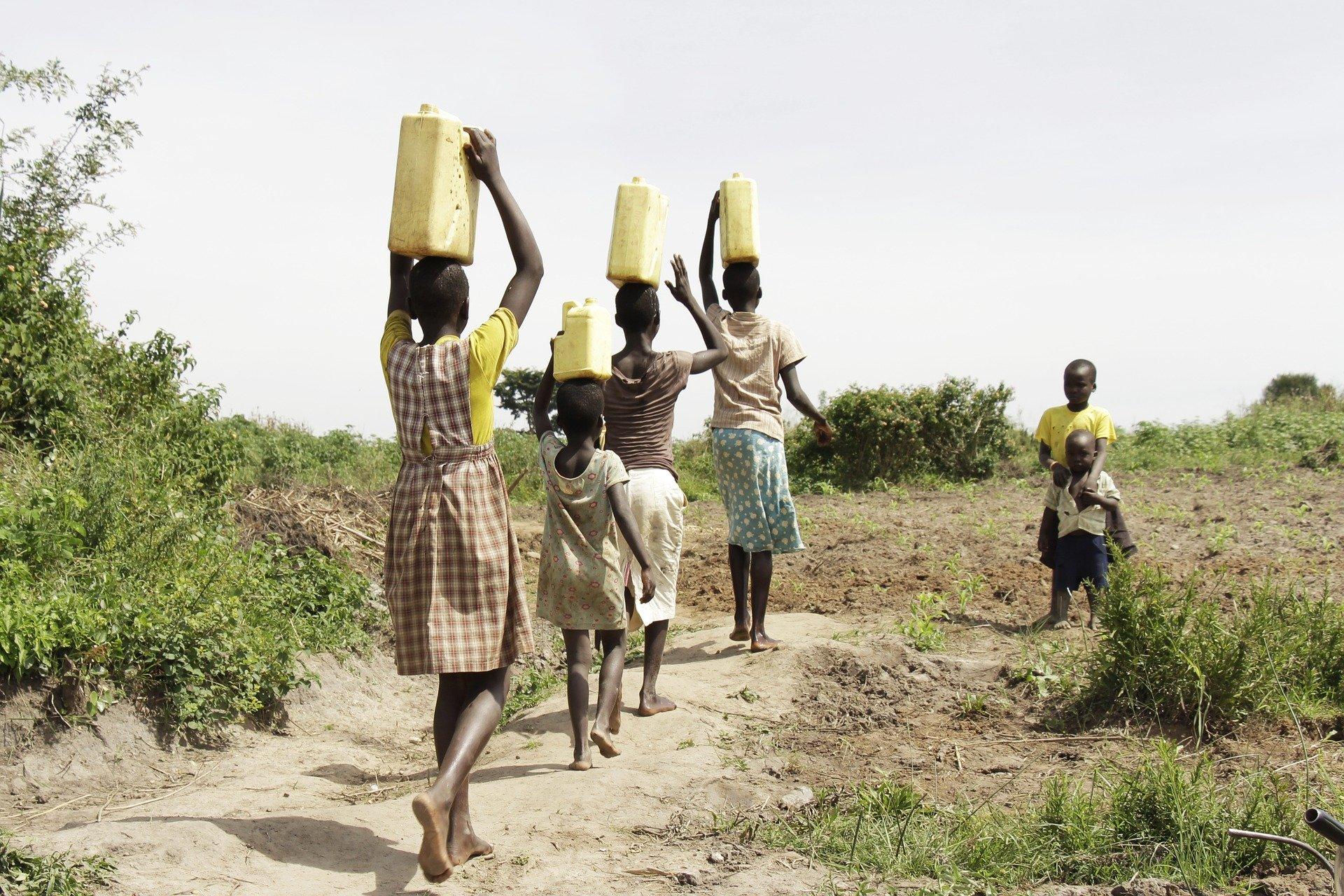 Uganda - U potrazi za nježnim divovima (2)