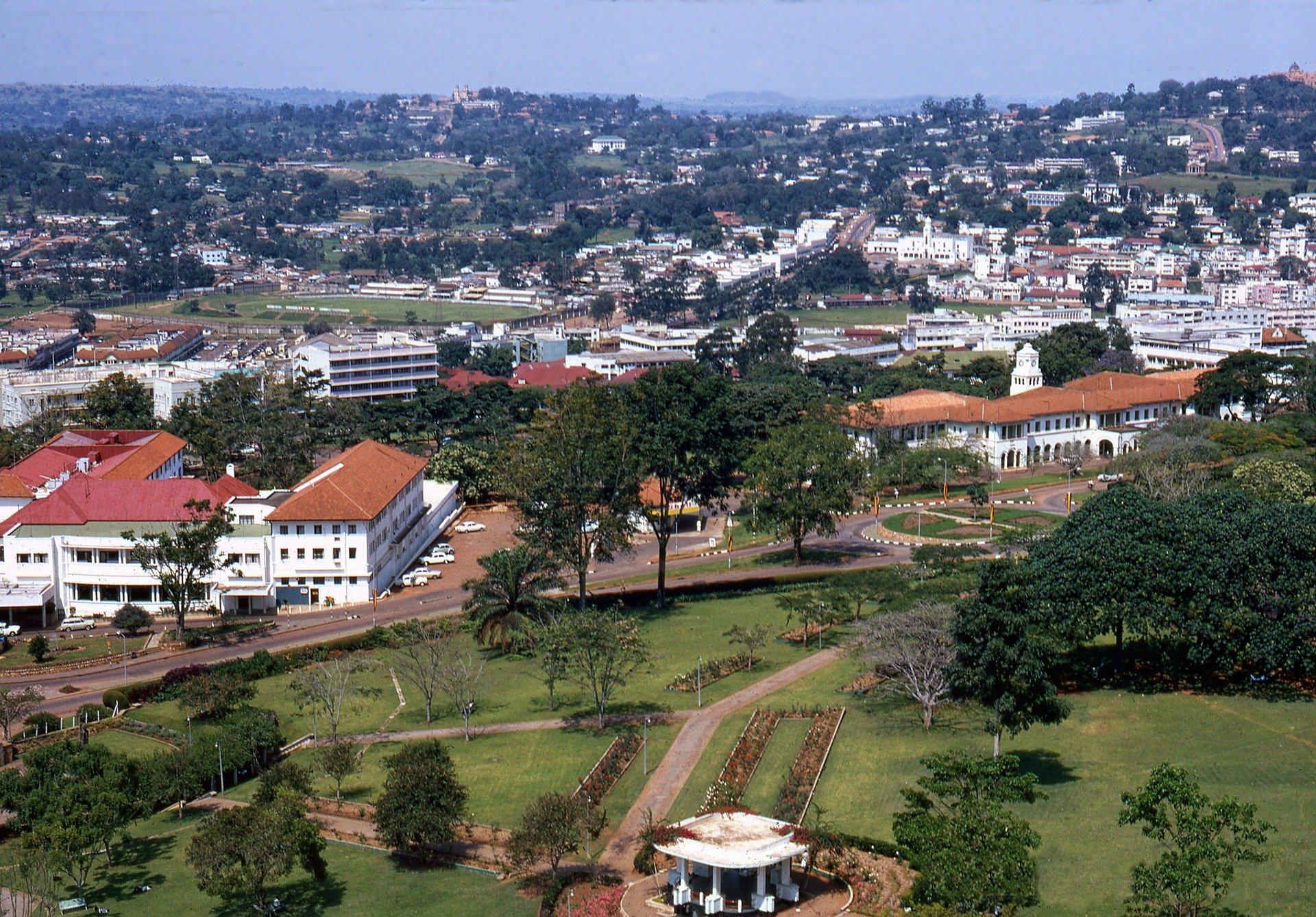 Uganda - U potrazi za nježnim divovima (6)