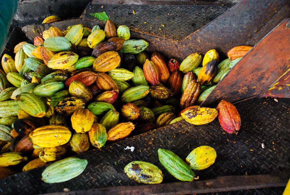 Putovanje Kostarika - Zemlja vulkana i raskošna Panama (5)